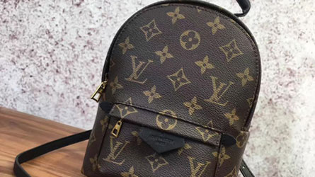 Louis Vuitton - Birkin sac à dos